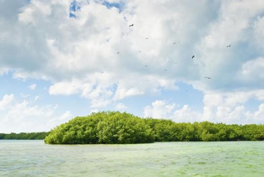 Dominikanische Republik: Laguna Gri-Gri