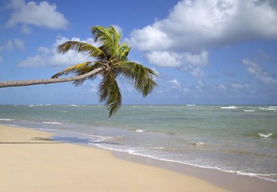 Dominikanische Republik: Punta Cana