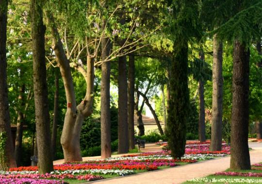 Istanbul: Emirgan Park