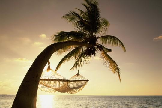 Malediven: Hängematte