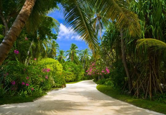 Malediven: Sultan Park