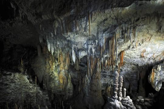 Slowenien (Küste & Karst): Postojna - Höhlen