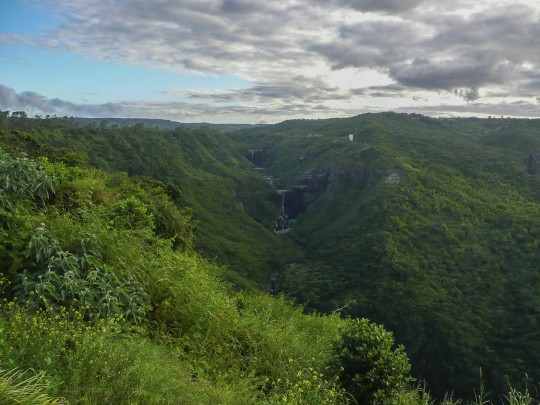 Mauritius: Black River Gorges National Park