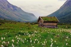Norwegen: Jotunheimen, Oppland