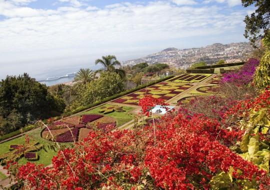 Sehenswuerdigkeiten Madeira Botanischer Garten