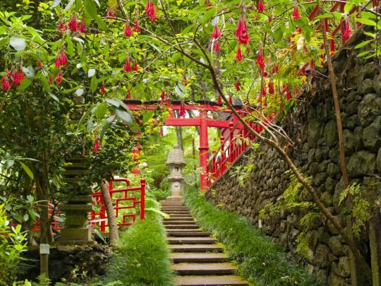 Madeira: Jardim Tropical Monte Palace