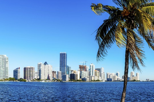 Florida: Miami Skyline