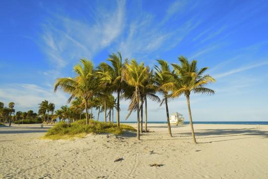 Florida: Crandon Park