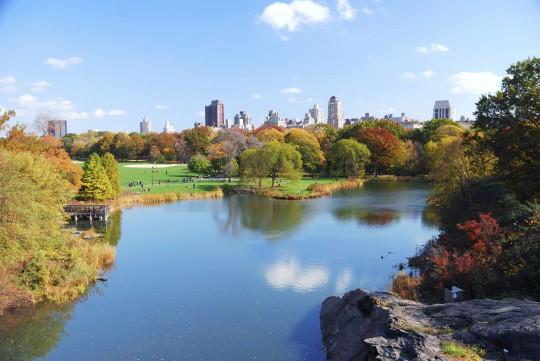 New York: Central Park
