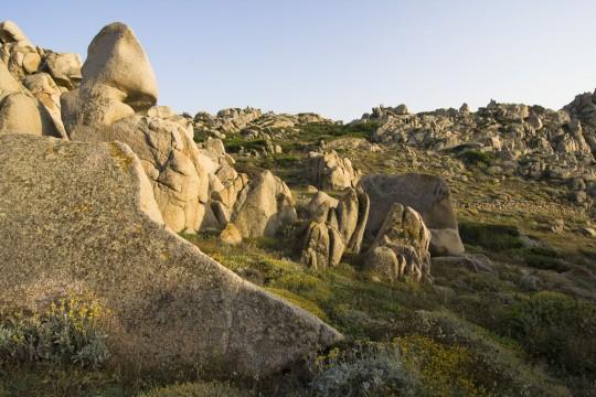 Sardinien: Capo Testa / Valle