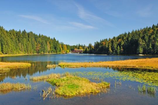 Bayerischer Wald: Arbersee