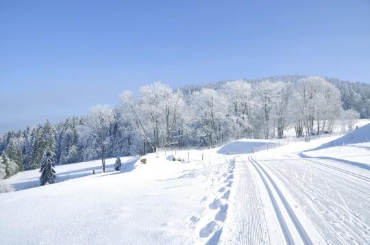 Bayerischer Wald: Winterzeit