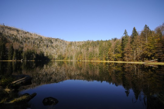 Bayerischer Wald: Rachelsee