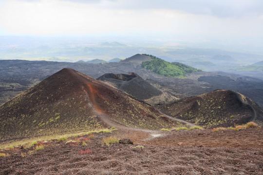 Sizilien: Parco dell'Etna