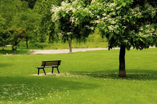 Görlitzer Park (Symbolbild)
