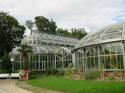 Berlin: Botanischer Garten