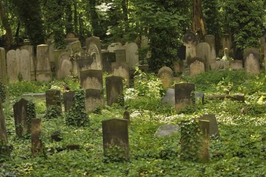 Berlin: Jüdischer Friedhof Weißensee