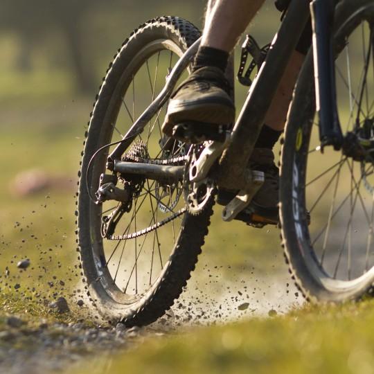 Fahrradtouren (Symbolbild)