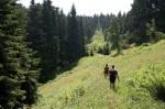 Erzgebirge: Wanderlust