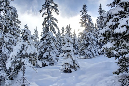 Zillertal: Winterlandschaft