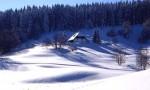 Schluchsee: Winteridylle