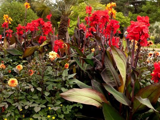 Real Jardin Botanico (Symbolbild)