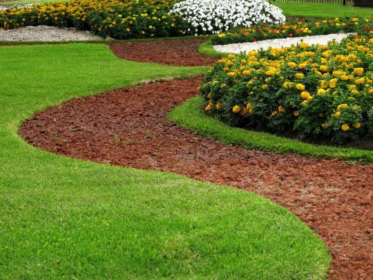 Botanischer Garten (Symbolbild)