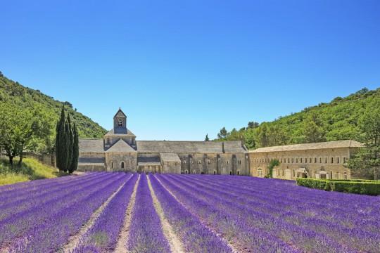 Provence: Notre-Dame de Sénanque