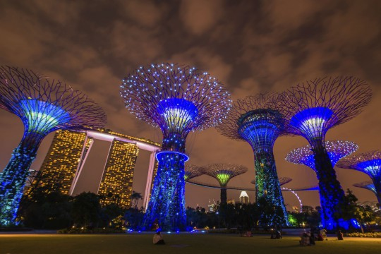 Singapur: SuperTree Grove