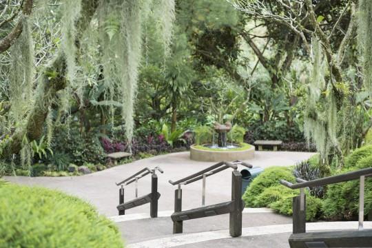 Singapur: Botanischer Garten