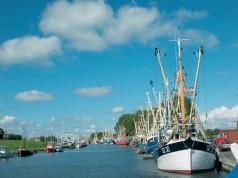Friedrichskoog: Hafen