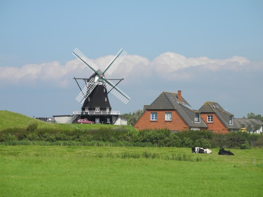 Nordsee (SH): Insel Pellworm