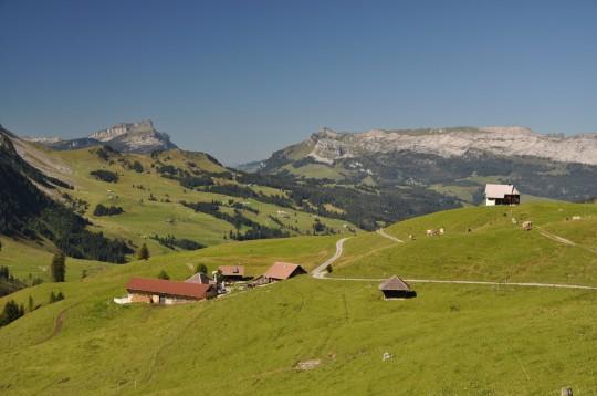 Zentralschweiz: Jänzimatt