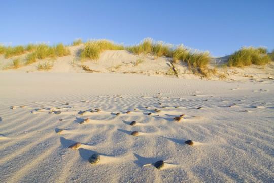 Niederlande (Nordsee): Insel Terschelling