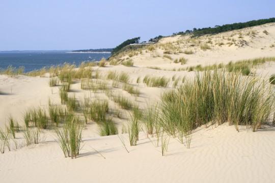 Frankreich (Atlantikküste): Düne von Pilat