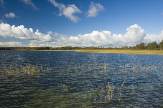 Polen (Masuren): Mauersee