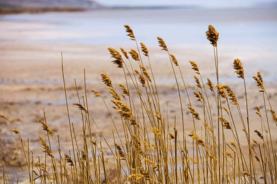 Kappadokien: Tuz Gölü