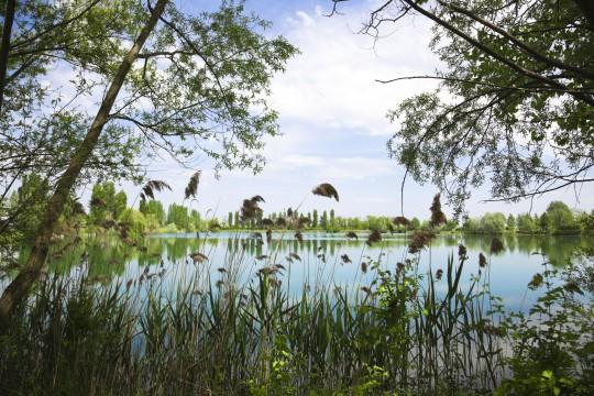Mittlere Adria: Parco Delta del Po