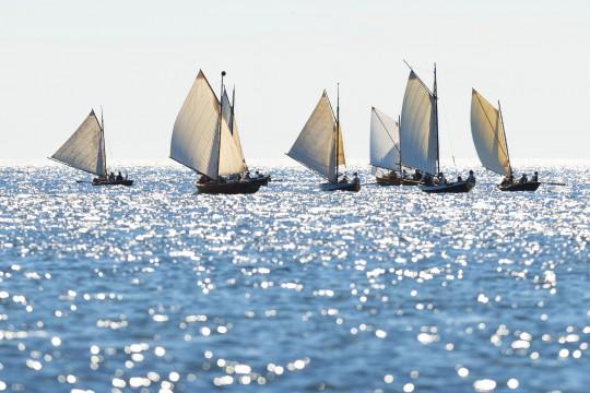 Segeln im Golf von Triest (Symbolbild)