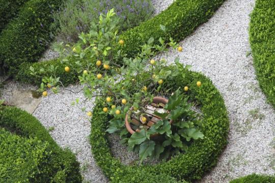 Obere Adria: Botanischer Garten