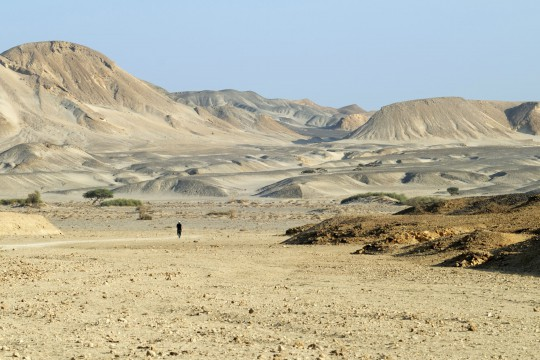 Wadi al-Gimal–Hamata Nationalpark