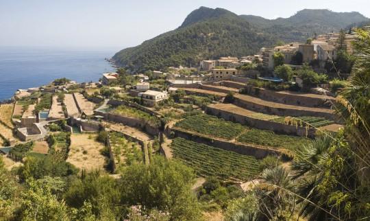 Mallorca: Dorf Banyalbufar