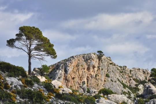Mallorca: Serra de Tramuntana