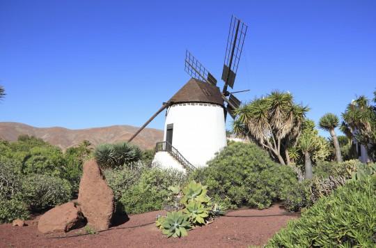 Fuerteventura: Molino de Antigua