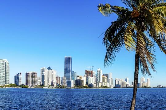 Florida: Miami Skyline