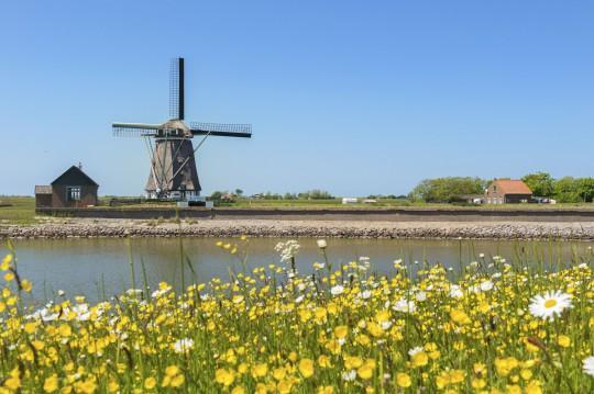 Niederlande (Nordsee): Insel Texel